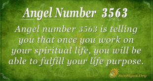 Angel Number 3563