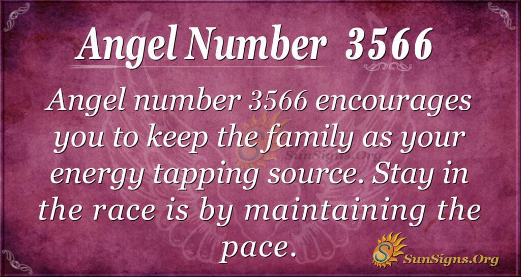 3566 angel number