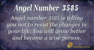 Angel number 3585