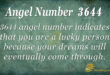3644 angel number