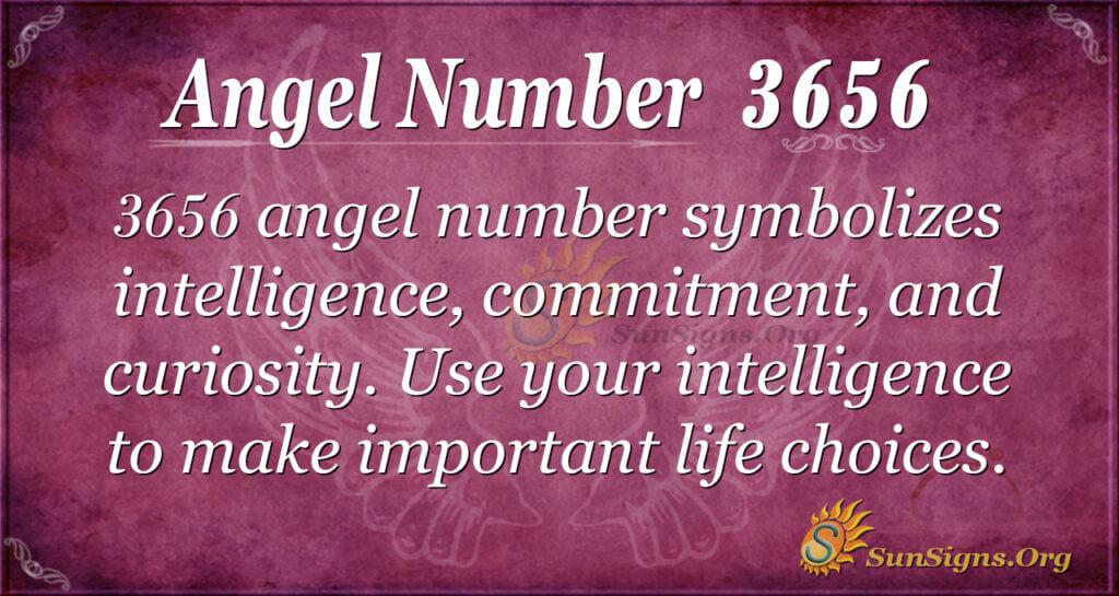 Angel Number 3656