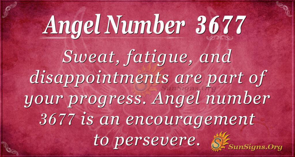 Angel Number 3677