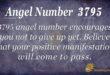 Angel number 3795
