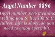 Angel number 3896