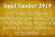Angel number 3919