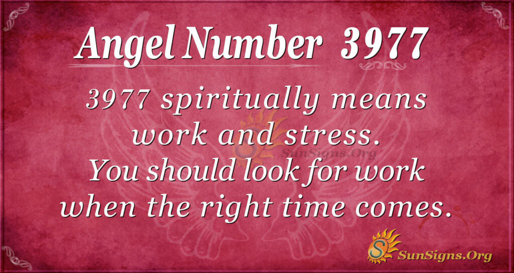 3977 angel number