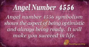 Angel number 4556