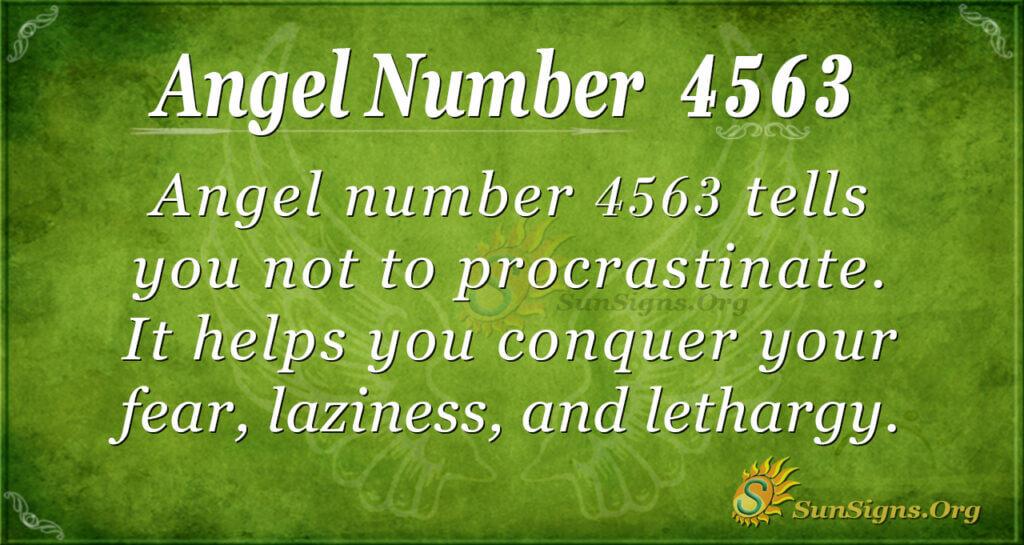 Angel Number 4563