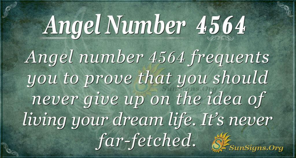 4564 angel number