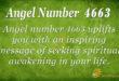 4663 angel number