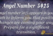 5025 angel number