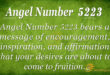 5223 angel number