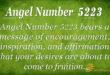 5223 angel number