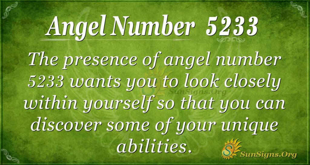 5233 angel number