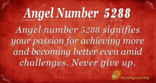 Angel number 5288