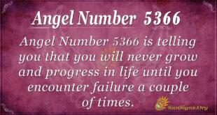 Angel number 5366