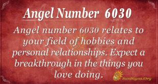 6030 angel number