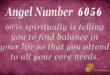 Angel Number 6056