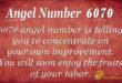 Angel Nuber 6070