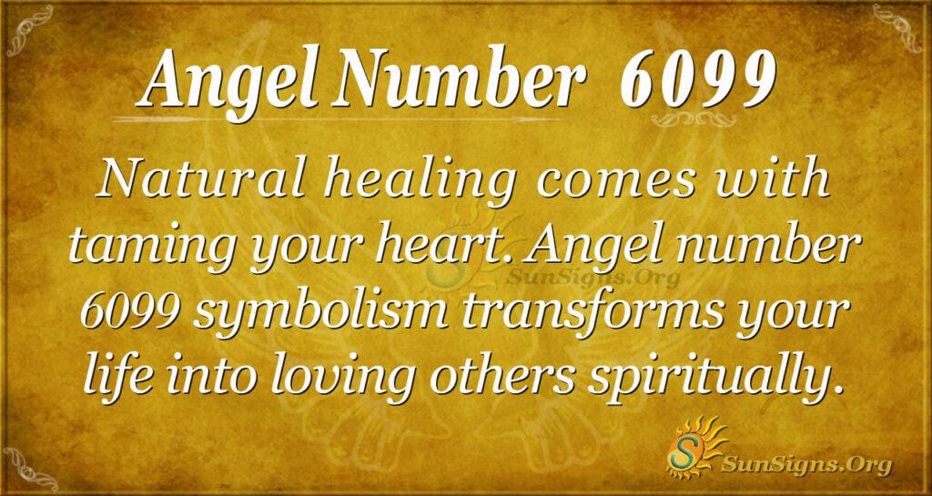 Angel number 6099