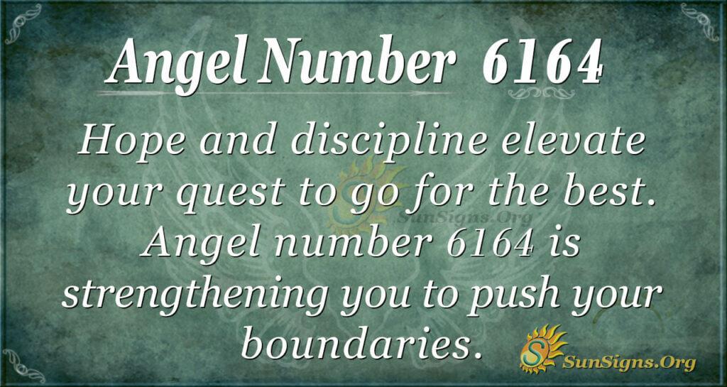 Angel number 6164