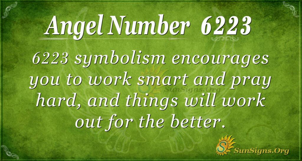 Angel number 6223