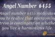 6455 angel number