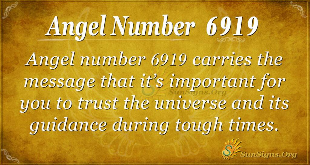 6919 angel number