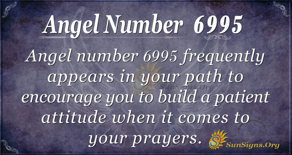 6995 angel number