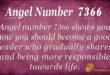 Angel number 7366