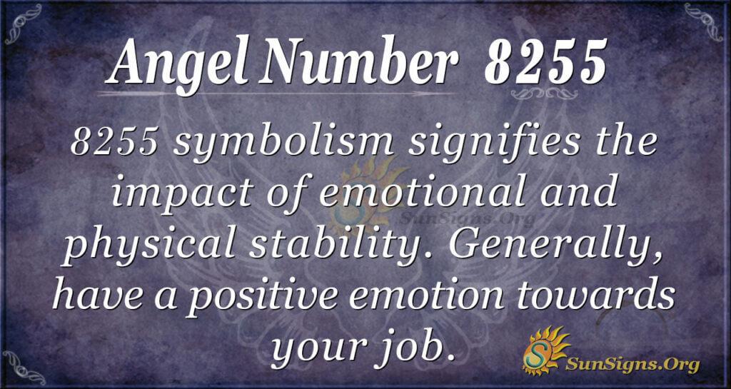 Angel Number 8255