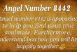 Angel number 8442