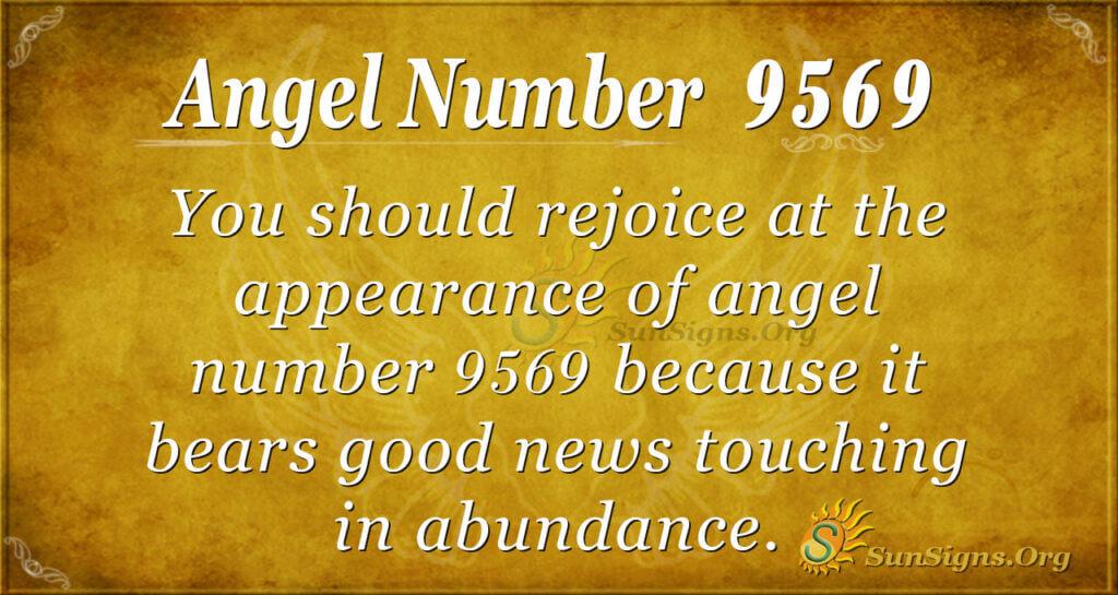 9569 angel number