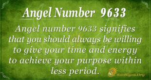 Angel number 9633