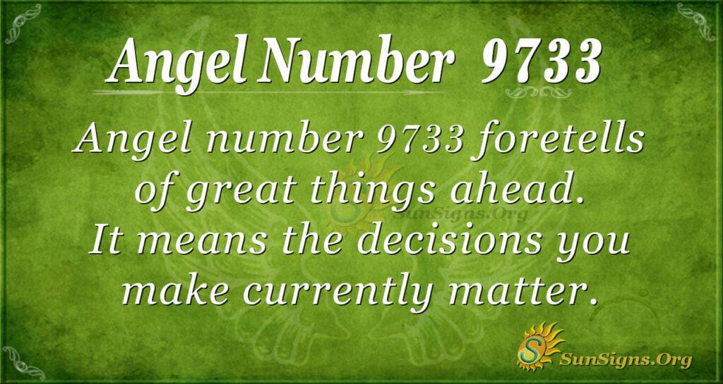 9733 angel number