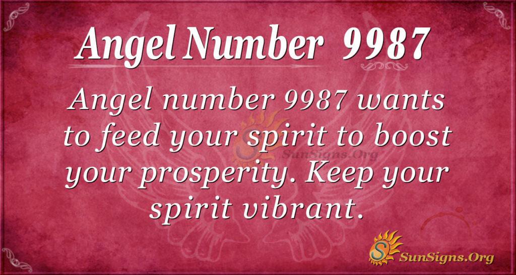 9987 angel number