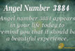 3884 angel number
