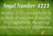4223 angel number