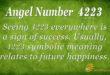 4223 angel number