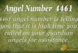 4461 angel number