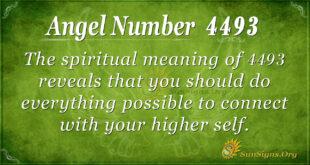 4493 angel number