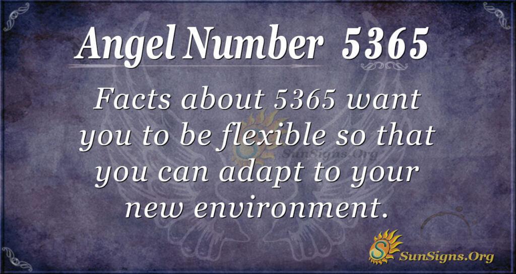 5365 angel number