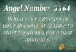 5564 angel number
