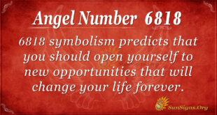 6818 angel number