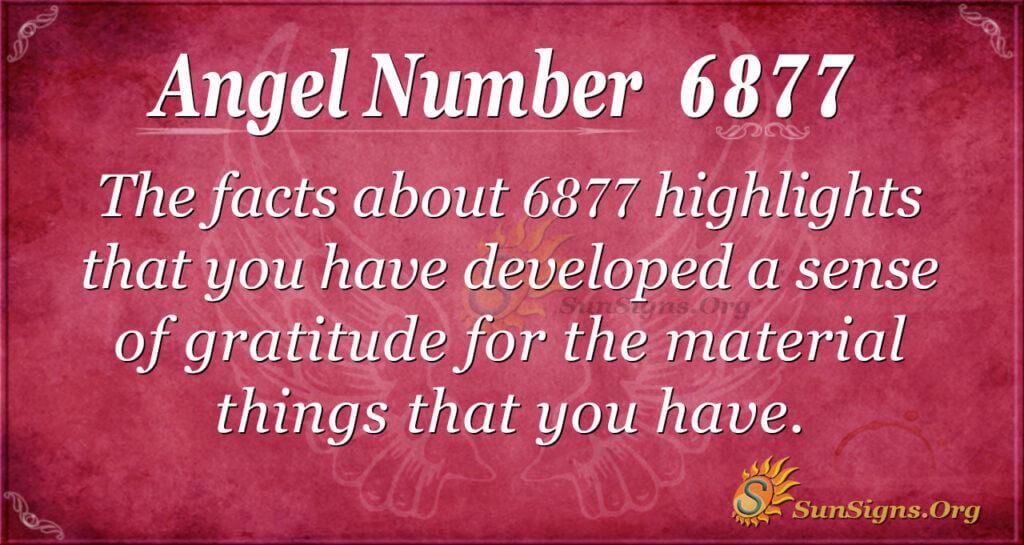 6877 angel number