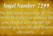 7299 angel number