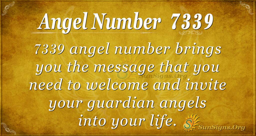 7339 angel number