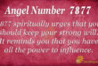 7877 angel number