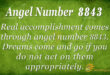 Angel Number 8843