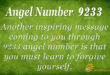 9233 angel number